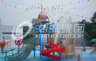 चीन Promotion Kids Water Slides for Children Play Area / Equipment Floor Space 9.5*6.5m आपूर्तिकर्ता