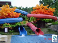 चीन Fiberglass Children Water Slide for a water park Blue / Yellow  / customized for Kids Water Park फैक्टरी